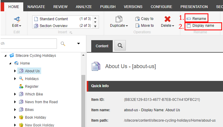 How to change the display name in Sitecore