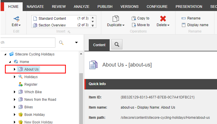 Sitecore display name field