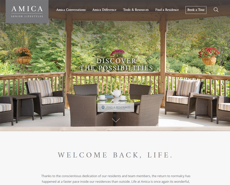 Amica website screenshot